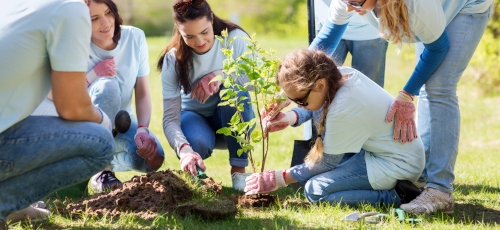 Charity support services from endsleigh