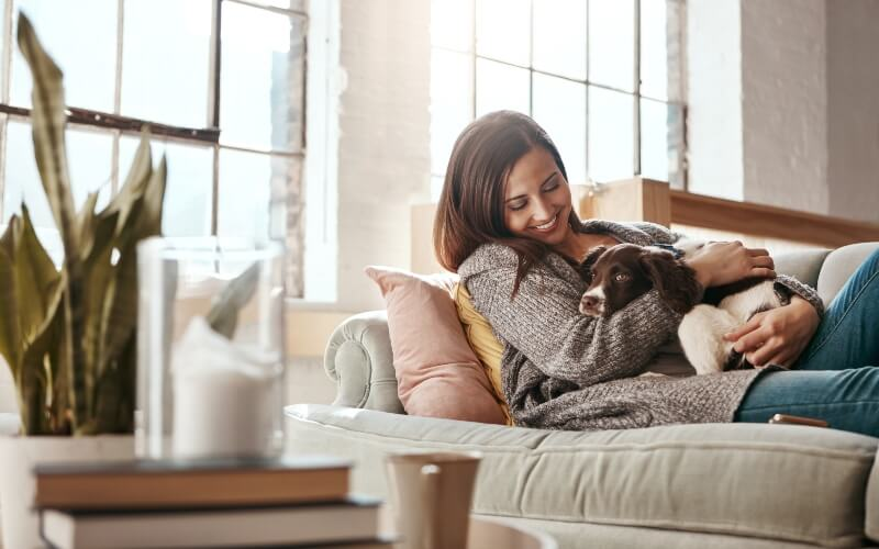 Lets with Pets insurance from Endsleigh